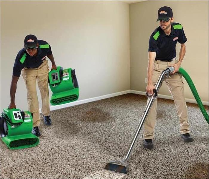 sevrpro employee in uniform, cleaning carpet with equipment in background